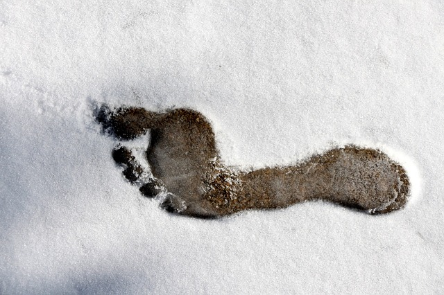 barefoot print in the snow